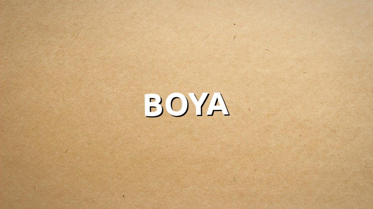 Boya groupe de musique à découvrir - tithouan pour le-musicien.com